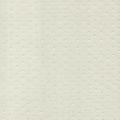 ورنی سفید