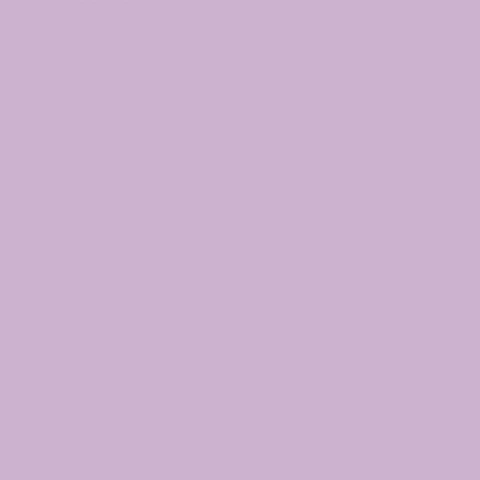 Star violet